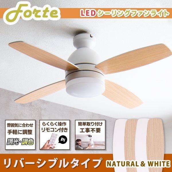 シーリングファンライト Forte (フォルテ)NA